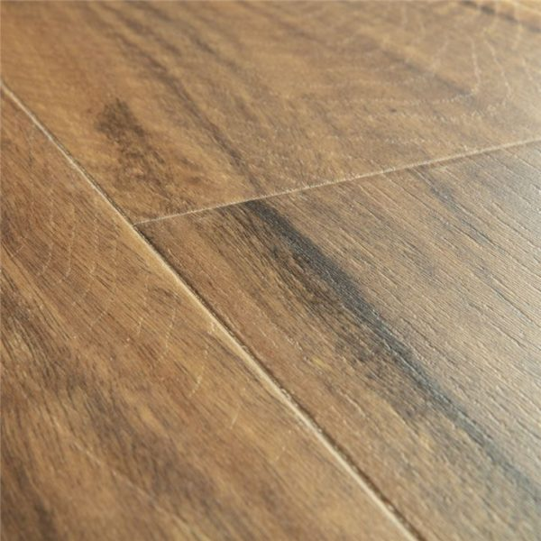 IM4446 Spotted Gum
